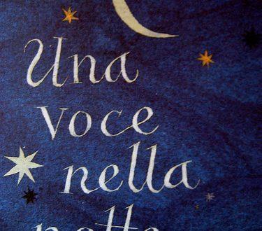 Una voce nella notte