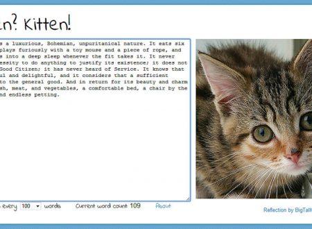 On writing 3: written kitten ovvero come battere il blocco dello scrittore